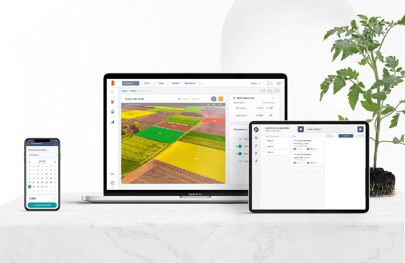 proyecto-Experiencia de usuario en el sector agroalimentario internacional