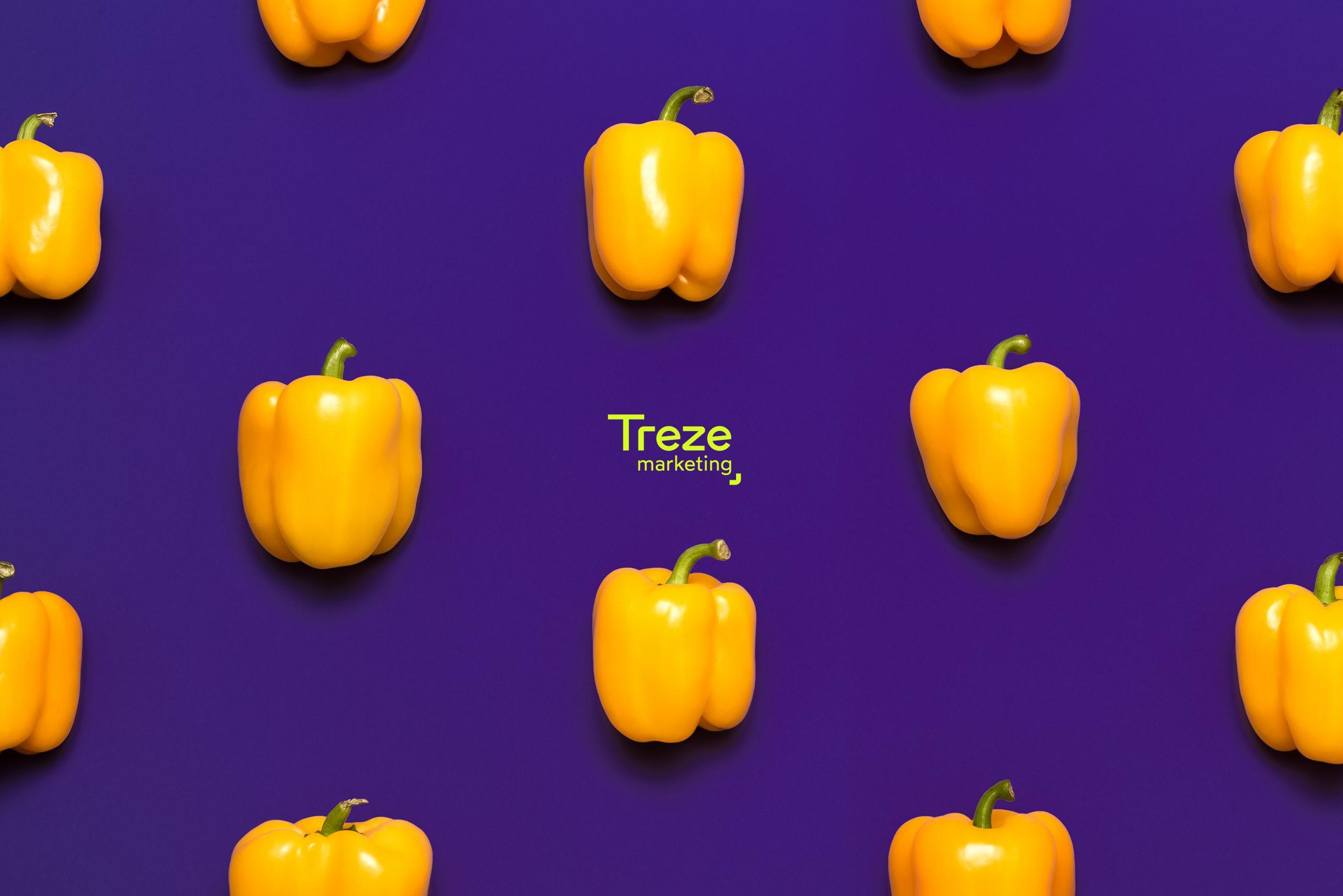 treze-agromarketing
