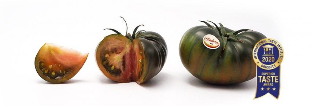 tomate adora verdita » Treze Marketing