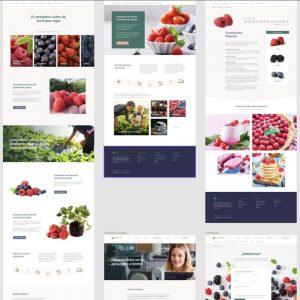 treze-marketing-trabajo_9